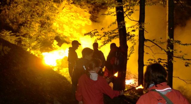 Nachtwanderung am 10.08.2011