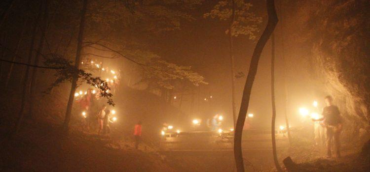 Nachtwanderung am 01.08.2012
